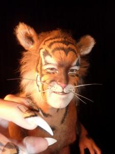 tijger compleet 4